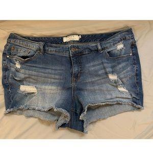 Torrid denim Jeans